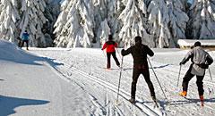 Langlauf Bayerischer Wald